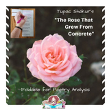 The Rose That Grew From Concrete by Tupac Shakur Foldable Poetry Analysis tool