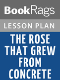 The Rose That Grew from Concrete Lesson Plans
