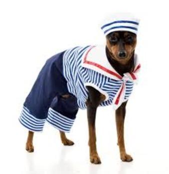 The Sailor Dog:  Margaret Wise Brown