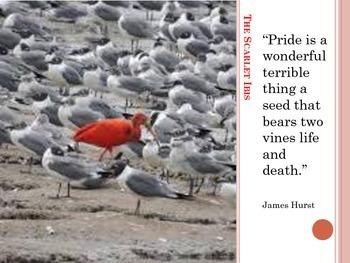 The Scarlet Ibis - James Hurst
