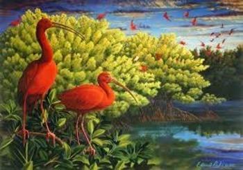 The Scarlet Ibis Scavenger Hunt for Information