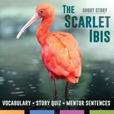 The Scarlet Ibis by James Hurst: Quiz, Mentor Sentences, a