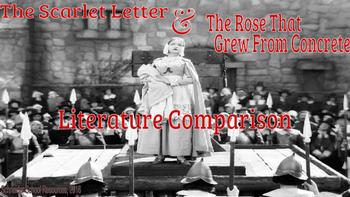 The Scarlet Letter Literature Comparison Assignment