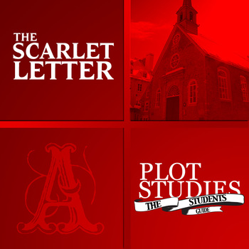 an analysis of the use of ambiguity in nathaniel hawthornes novel the scarlet letter Scarlet letter analysis paper the historical- fiction novel, the scarlet letter by nathaniel hawthorne, develops pearl's character not only as the plot progresses, but also as pearl begins to mature.