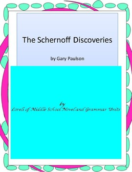 The Schernoff Discoveries Novel Unit With Literary and Gra