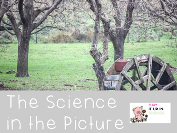 The Science in the Picture