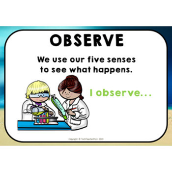 ** FREE DOWNLOAD ** Scientific Method Flash Posters for young science students