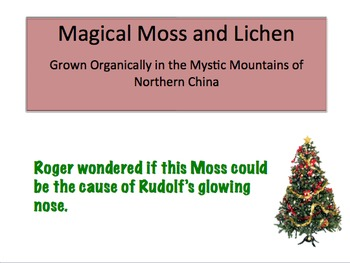 The Scientific Method-Red-Nosed Reindeer Mystery-Christmas-Powerpoint