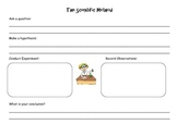 The Scientific Method Worksheet