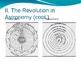 The Scientific Revolution Powerpoint