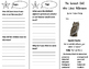 The Screech Owl Who Liked Television Trifold - Journeys 3rd Gr Unit 3 Week 1