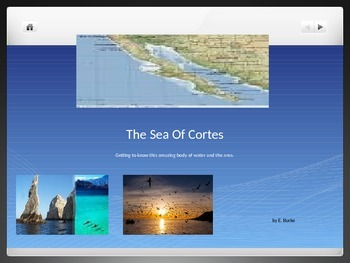 The Sea Of Cortes
