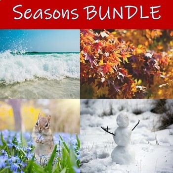 The Seasons Complete BUNDLE for Special Education