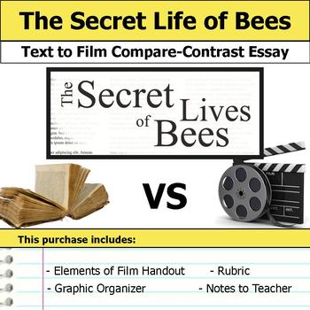 Secret Life Of Bees Book Teaching Resources  Teachers Pay Teachers  The Secret Life Of Bees  Text To Film Essay Science And Technology Essay Topics also Essay On Importance Of Good Health  High School Essay Topics