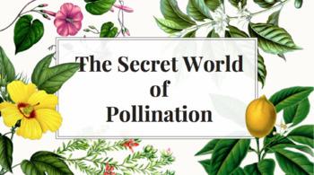 The Secret World of Pollination