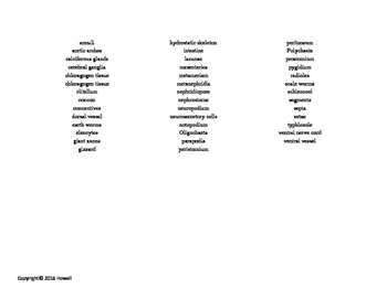 The Segmented Worms Vocabulary Word Search for Zoology