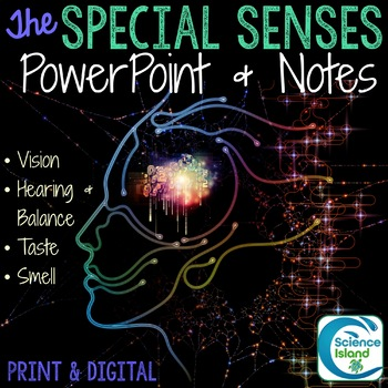 The Senses PowerPoint and Notes by Science Island | TpT