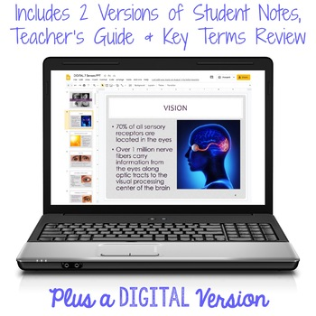 The Senses PowerPoint and Notes