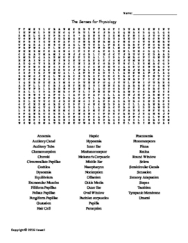 The Senses Vocabulary Word Search for Physiology