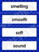 Senses Word Wall Words- Editable