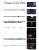 The Shawshank Redemption Film (1994) Study Guide Movie Packet