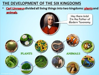 The Six Kingdoms and Three Domains of Life - PowerPoint {Editable}