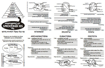 foldable classification the six kingdoms of classification biology. Black Bedroom Furniture Sets. Home Design Ideas