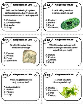 The Six Kingdoms of Life Task Cards: Plants, Animals, Bacteria, Protists, etc.