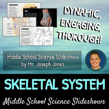 The Skeletal System: A Life Sciences Slideshow!