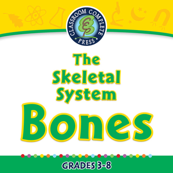 The Skeletal System - Bones - MAC Gr. 3-8