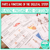 The Skeletal System: Independent Lesson