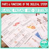 Skeletal System: Independent Lesson