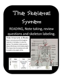 The Skeletal System: Joint & Skeleton function, nonfiction interactive reading,