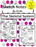The Skeletal System Sketch Doodle Notes,Student Notes, inc