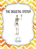 The Skeletal System: Unit Plan