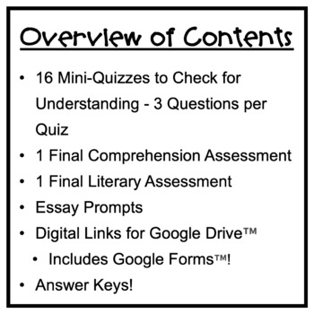The Skin I'm In: Tests, Comprehension Quizzes, Essays, Answer Keys!