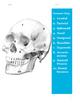 The Skull - Part 1