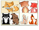 The Sly Fox Picture Match Story (1st-2nd Grade Reading Level)
