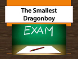 The Smallest Dragonboy exam - multiple choice, true and false, and essay