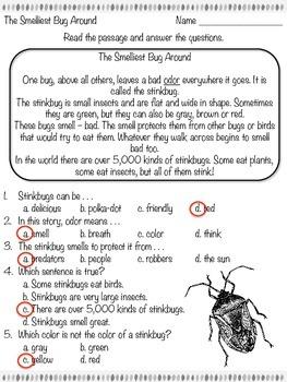 The Smelliest Bug Around - Reading Passage - Practice Worksheet