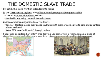 The South Expands: Slavery and Society 1800 - 1860