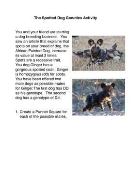 The Spotted Dog Genetics Activity