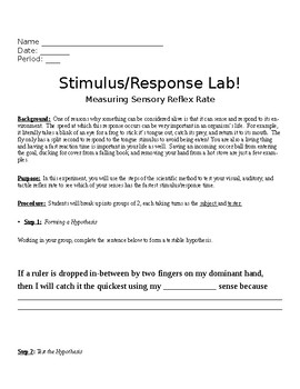 The Stimulus & Response Lab