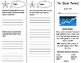 The Stock Market Trifold - ReadyGen 4th Grade Unit 4 Module B