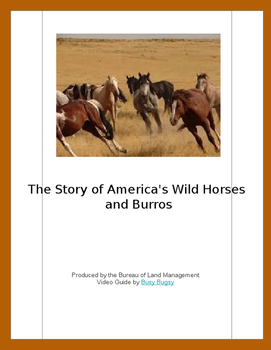The Story of America's Wild Horses and Burros Video Guide