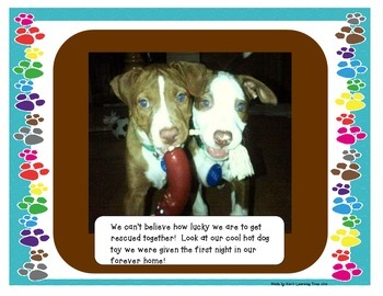 The Story of Bentley and Copper (A Pit Bull Adoption/Rescue)