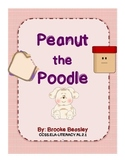 The Story of Peanut the Poodle (Who, What, When, Where, Why, How) The 5 W's