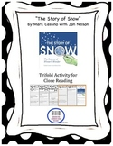 """""""The Story of Snow"""" Trifold Activity McGraw Hill Reading W"""