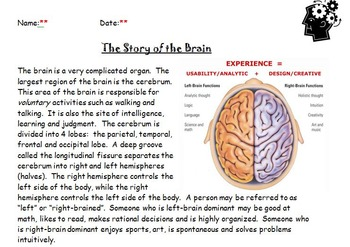 The Story of the Brain with KEY