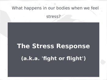 The Stress Response Power Point